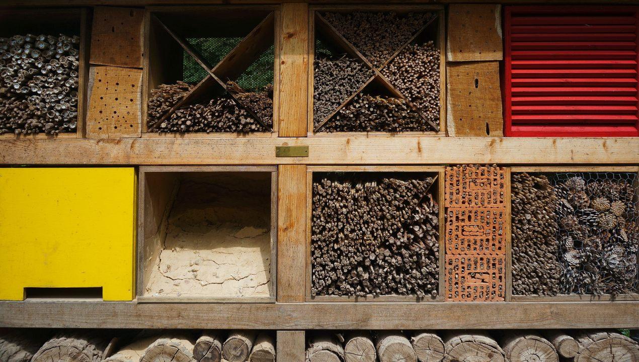 Fabriquer une maison d 39 insectes pollinisateurs jardin - Fabriquer une maison a insecte ...